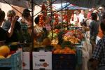 Nordwesten Mallorca 2008