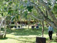 Der Hotelgarten mit Liegewiese